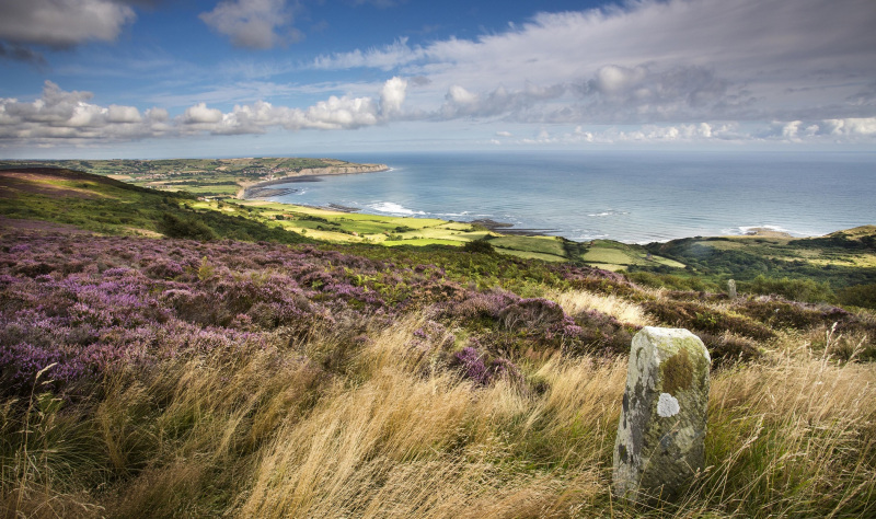 Slow down and get back to nature on the Yorkshire coast