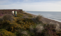 The Suffolk Coast & Heaths