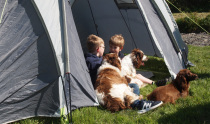 Tarka Trail Camping