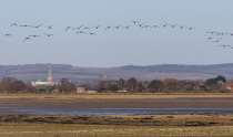 RSPB Pagham Harbour & Medmerry
