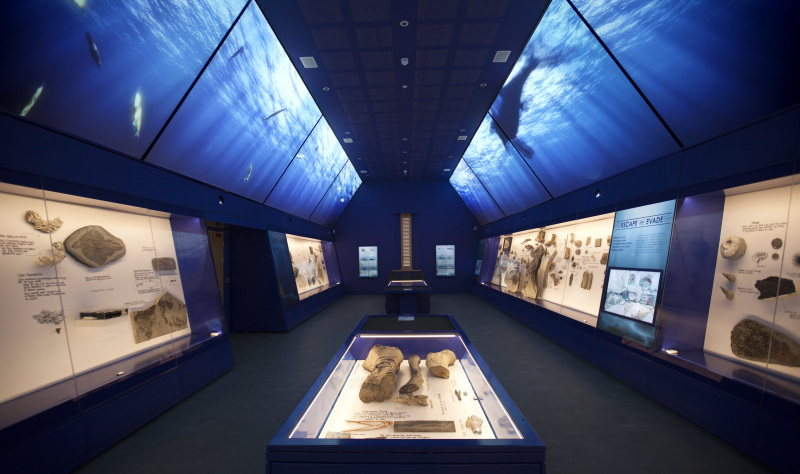 Galleries and museums at the coast