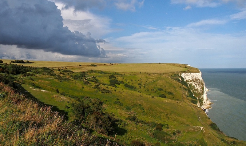 Going Green in White Cliffs Country