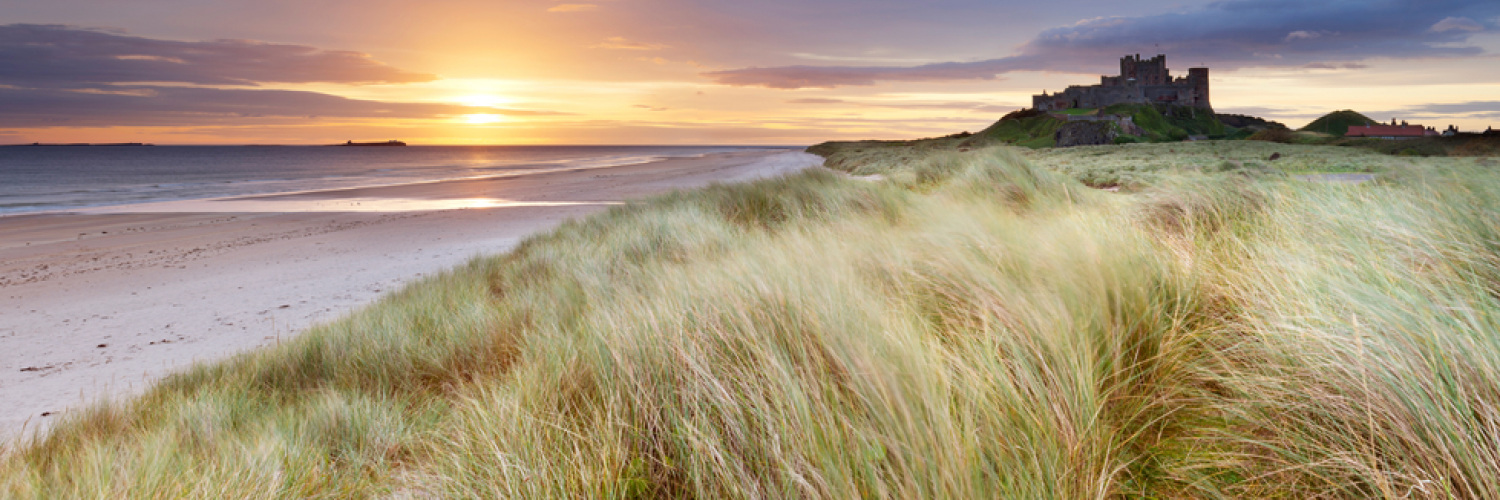 Groovy Northumbria Coast Country Cottages Alnmouth Northumberland Download Free Architecture Designs Scobabritishbridgeorg