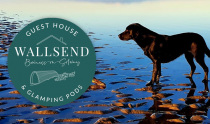Wallsend Guest House & Glamping Pods